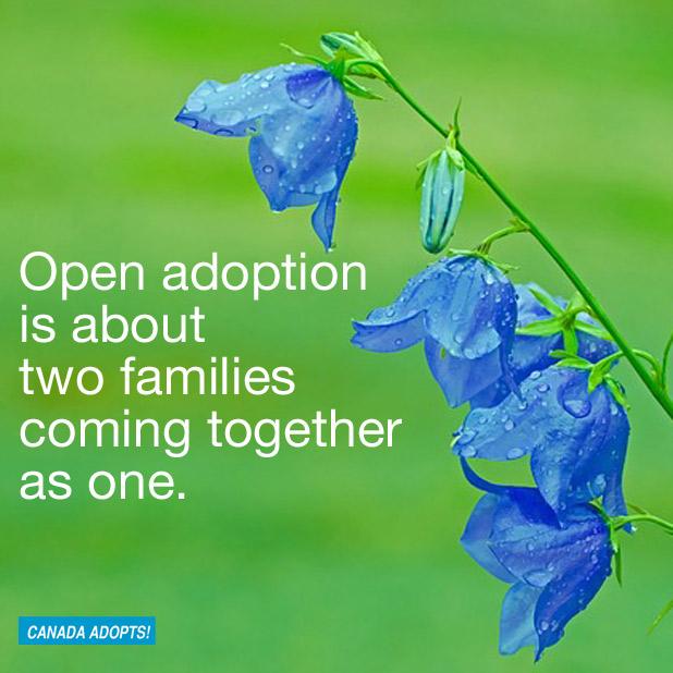 openadoptionisabouttwofamilies