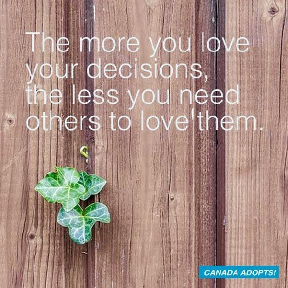 adoption-decision-quote