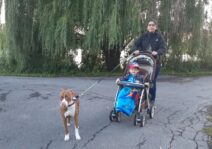 Exploring new parks in our community with our host child and pup