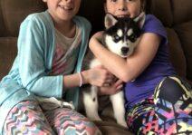 Baby Sasha and the girls