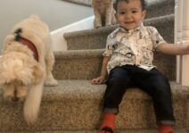 Asher with his dogs! Charlie and Harper