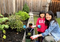 Gardening in the backyard.  We also like to grow our own herbs