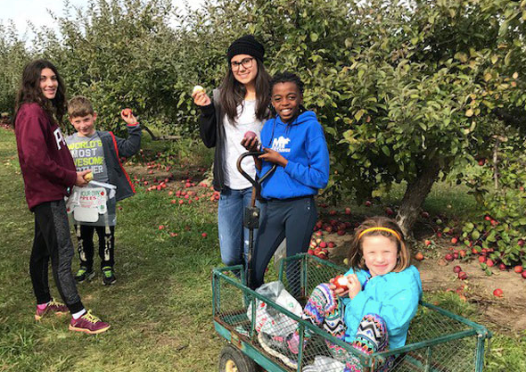 Our Annual Apple Picking Day with our family and friends