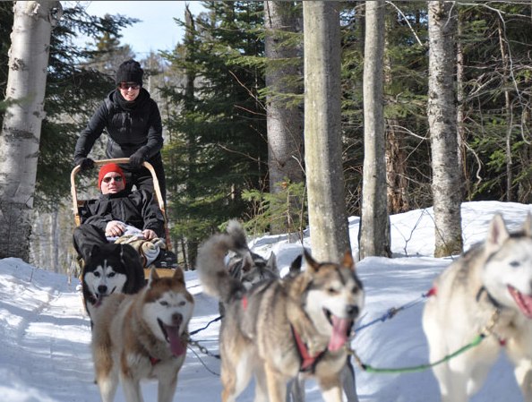 Dog sledding in Québec (2012).