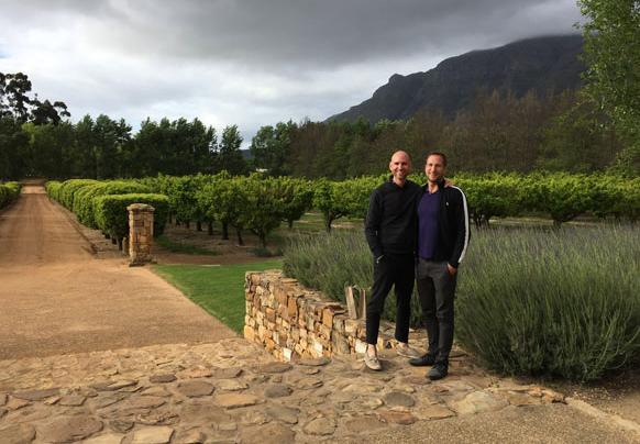 Wine region South Africa