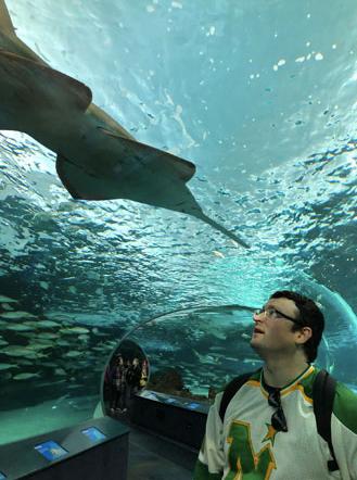 Visiting the nearby aquarium.
