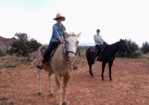 We love magical New Mexico, and have a tradition to travel there every 5 years.